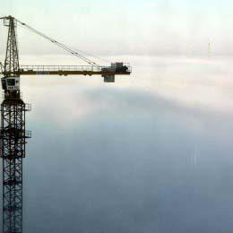 Crane fog