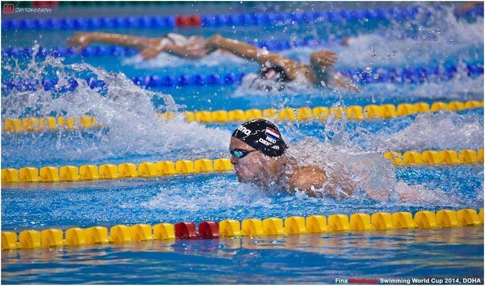 Swimmers compete last August in the Qatar leg of the FINA World Cup.